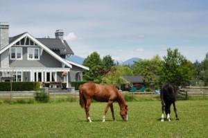 El-Paso-County-Colorado-Horse-Property