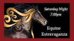equine-extravaganza